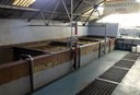 •Fermentation tanks and molasses all a-bubble at St. Lucia Distiller's-RG1