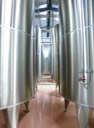 Pretty Stainless Steel resting tanks all in a row