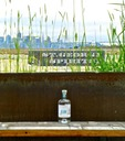 St. George California Agricole Rum stands among the backdrop of San Francisco bay Area, the SF Bay Bridge and SF skyline.  The Rum Gallery calls this place home.