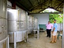 Stainless steel storage tanks for fresh pressed cane juice and sugarcane rum.